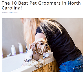 Top 10 Best Pet Groomers in North Carolina